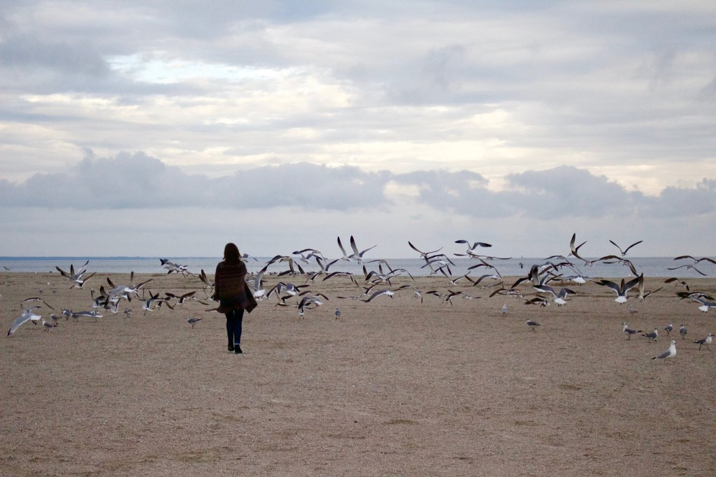 Sarah and the gulls